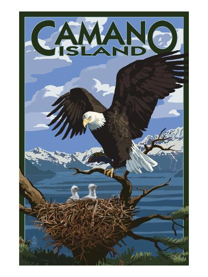 Camano Island, Washington - Bald Eagle and Chicks-Lantern Press-Art Print