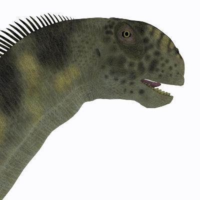 Camarasaurus Dinosaur Head-Stocktrek Images-Art Print