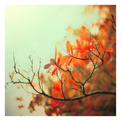 https://imgc.artprintimages.com/img/print/cambridge-dreams_u-l-f69ffa0.jpg?p=0
