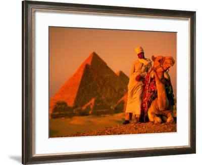 Camel and Driver Resting near the Great Pyramids, Egypt-Alexander Nesbitt-Framed Photographic Print