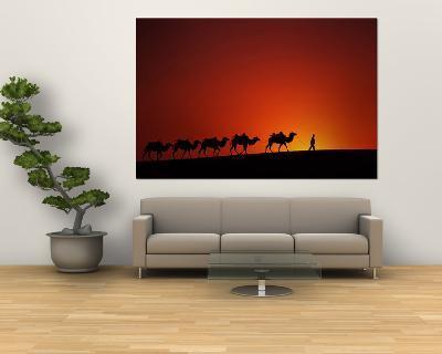 Camel Caravan at Sunrise, Silk Road, China-Keren Su-Giant Art Print