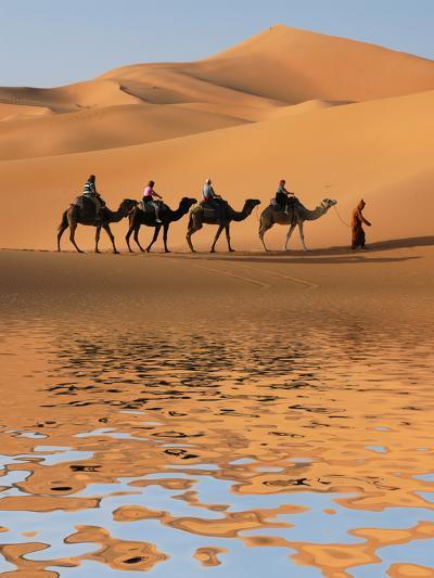 Camel Caravan Going along the Lake the Sahara Desert, Morocco.-Vladimir Wrangel-Photographic Print