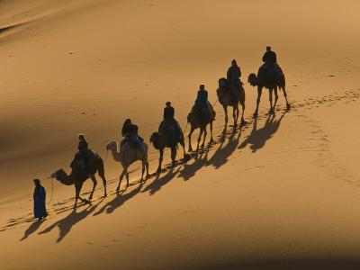 Camel Caravan Riding Through the Sand Dunes of Merzouga, Morocco, North Africa, Africa-Michael Runkel-Photographic Print