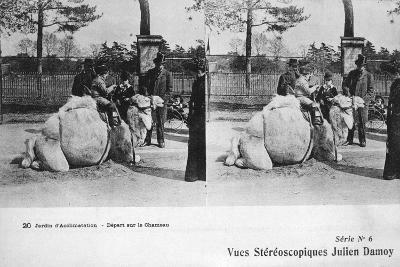Camel Ride, Zoological Gardens, C1900-Julien Damoy-Giclee Print