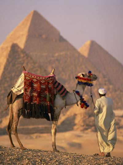 Camel with Woven Saddle Cloth Being Led Towards Pyramids by Man in White Robe, at Giza, Egypt--Photographic Print
