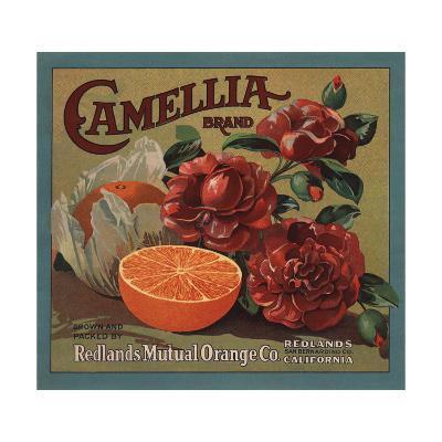 Camelia Brand - Redlands, California - Citrus Crate Label-Lantern Press-Art Print