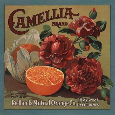 https://imgc.artprintimages.com/img/print/camelia-brand-redlands-california-citrus-crate-label_u-l-q1grbs20.jpg?p=0