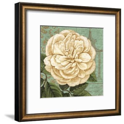 Camellia Study II-Suzanne Nicoll-Framed Art Print