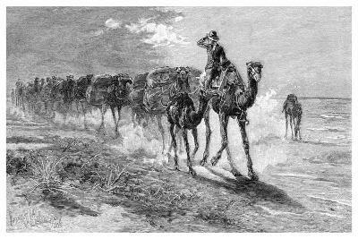 Camels Carrying Wool, 1886-Frank P Mahony-Giclee Print