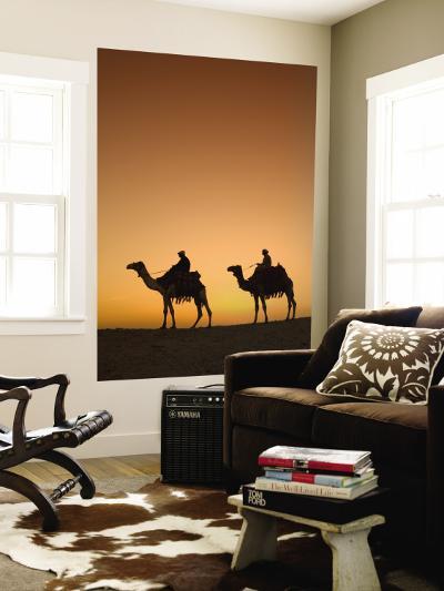 Camels Near the Pyramids at Giza, Cairo, Egypt-Doug Pearson-Wall Mural