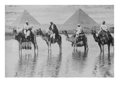Camels with Native Riders on Board Stand in Reflective Floodwaters--Art Print