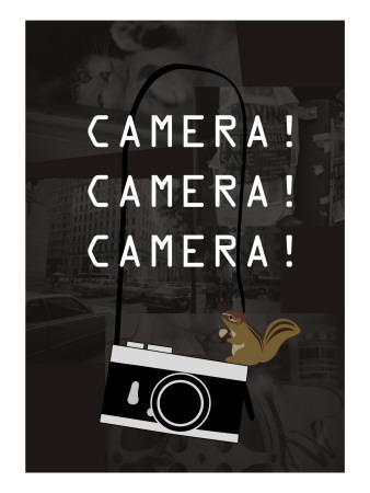 https://imgc.artprintimages.com/img/print/camera-brown_u-l-pdx2h80.jpg?p=0