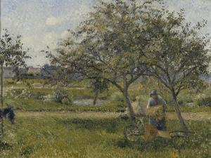 La brouette, verger by Camille Pissarro