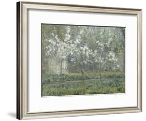 Printemps. Pruniers en fleurs, dit : Potager, arbres en fleurs, printemps, Pontoise by Camille Pissarro