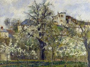 The Vegetable Garden with Trees in Blossom, 1877 by Camille Pissarro
