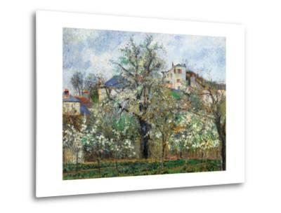 Vegetable Garden and Trees in Blossom, Spring, Pontoise