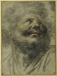 Head of a Bearded Man, Looking Up to the Right by Camillo Procaccini