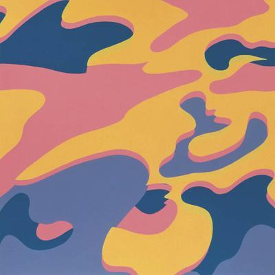 https://imgc.artprintimages.com/img/print/camouflage-1987-pink-purple-orange_u-l-f5ludb0.jpg?p=0