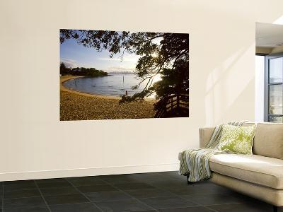 Camp Cove-Oliver Strewe-Wall Mural