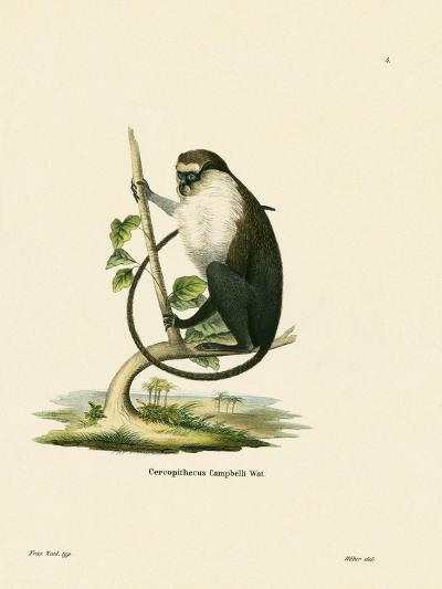 Campbell's Mona Monkey--Giclee Print