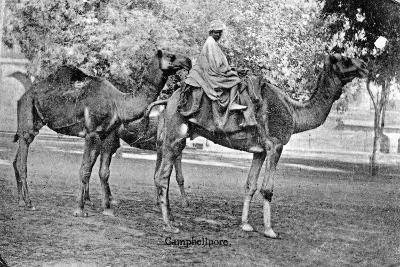 Campbellpore, Pakistan, 20th Century--Giclee Print