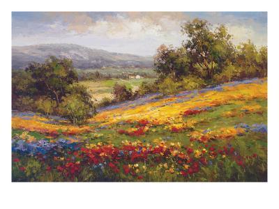 Campo di Fiore I-Hulsey-Premium Giclee Print