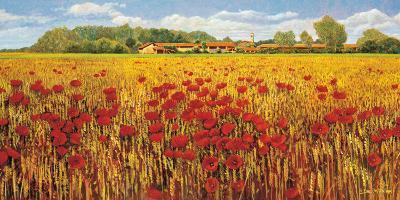 Campo di Papaveri-Andrea Del Missier-Art Print