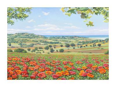 Campo di papaveri-Andrea Del Missier-Giclee Print