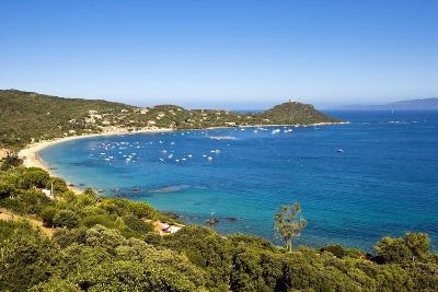Campomoro Bay on Corsica-Massimo Borchi-Photographic Print
