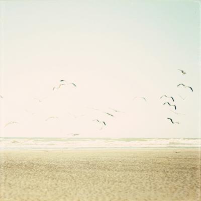 Can You Hear the Sounds-Susannah Tucker-Photographic Print