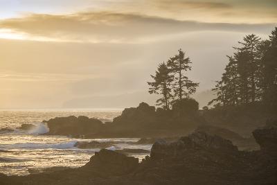 Canada, British Columbia, Vancouver Island, Port Renfrew, Juan Defuca Provincal Park-Christian Heeb-Photographic Print