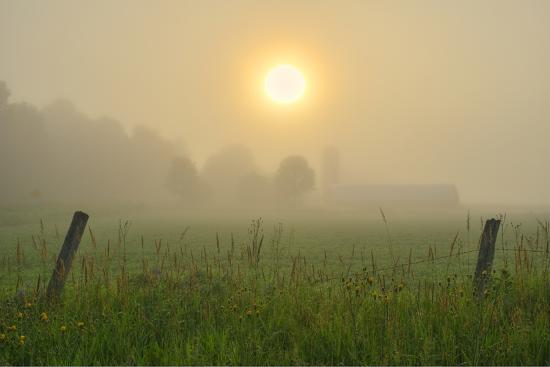 Canada, Ontario, Bourget. Farm field at sunrise in fog.-Jaynes Gallery-Photographic Print
