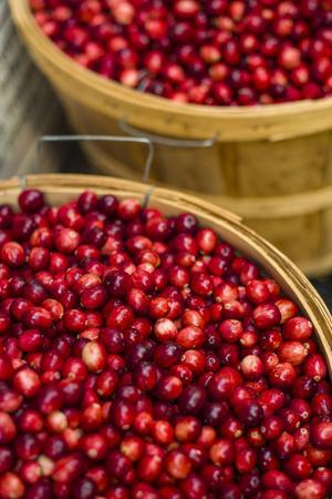 https://imgc.artprintimages.com/img/print/canada-quebec-montreal-little-italy-marche-jean-talon-market-cranberries_u-l-q1gag300.jpg?p=0
