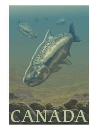 https://imgc.artprintimages.com/img/print/canada-salmon-view_u-l-q1gokt60.jpg?p=0