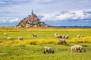 Beautiful View of Famous Historic Le Mont Saint-Michel Tidal Island with Sheep Grazing on Fields Of by canadastock