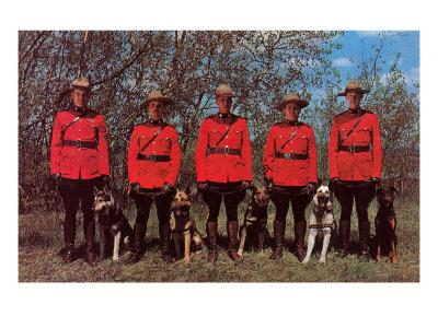 Canadian Mounties with Dogs--Art Print