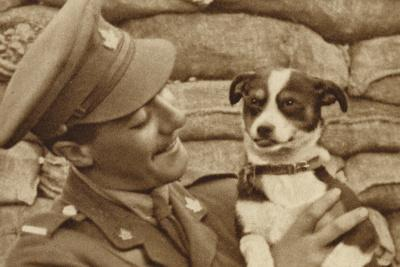 Canadian Soldier with a Dog 'Captured' at Courcelette, Somme, France, World War I--Photographic Print