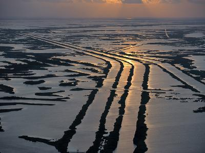 Canals Hold Pipelines That Deliver Oil and Gas From Offshore Wells-Joel Sartore-Photographic Print