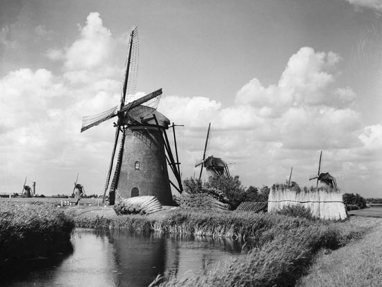 Canalside Windmills--Photographic Print