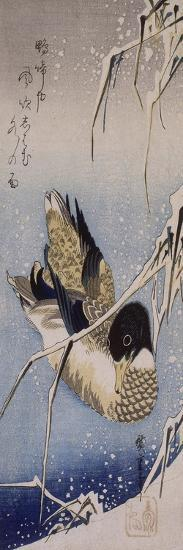 Canard et roseaux sous la neige-Ando Hiroshige-Giclee Print