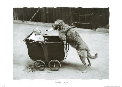 Canine Nurse--Art Print