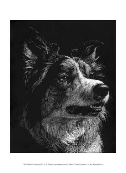 Canine Scratchboard IV-Julie Chapman-Art Print