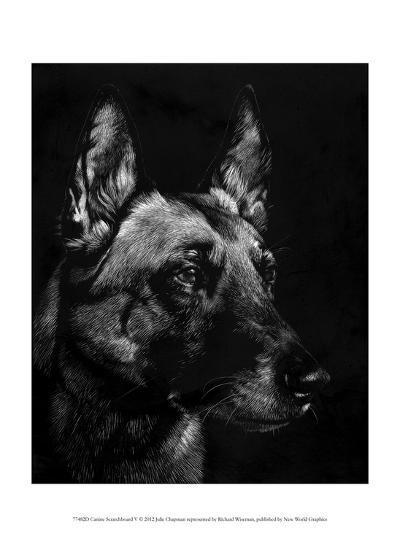 Canine Scratchboard V-Julie Chapman-Art Print