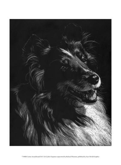 Canine Scratchboard XI-Julie Chapman-Art Print