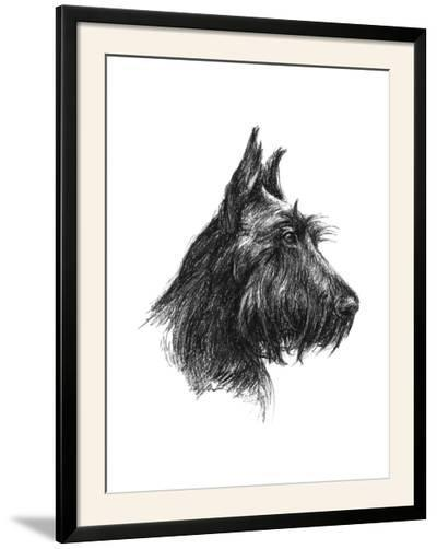 Canine Study II-Ethan Harper-Framed Photographic Print
