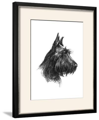 Canine Study II-Ethan Harper-Framed Photographic Print