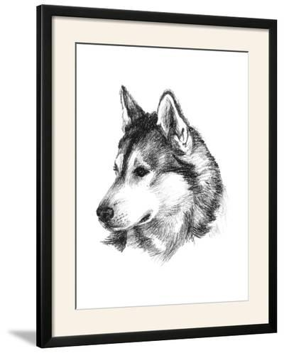 Canine Study III-Ethan Harper-Framed Photographic Print