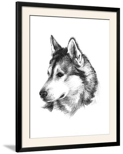 Canine Study III-Ethan Harper-Framed Photographic Print