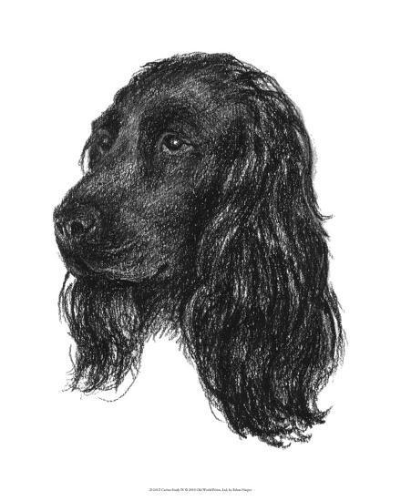 Canine Study IV-Ethan Harper-Giclee Print