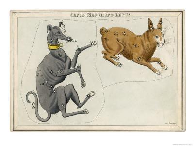 Canis Major (Dog) and Lepus (Hare) Constellation-Sidney Hall-Giclee Print